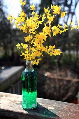 Olive Oil Vase